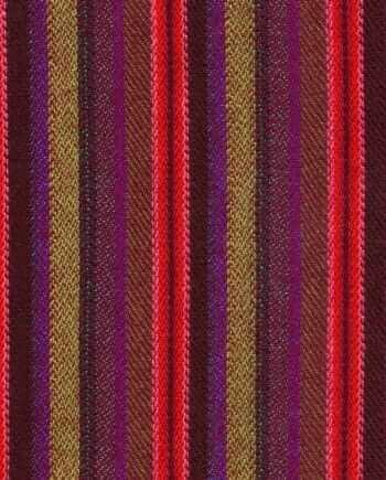 The Dashing Stripe-1018